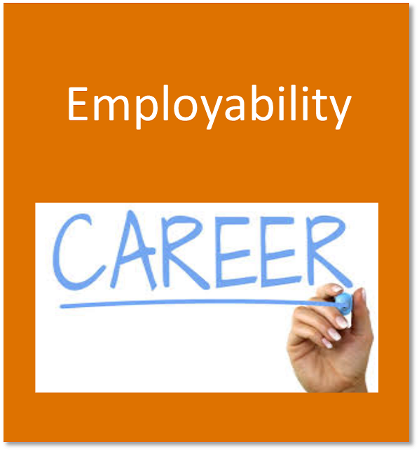 Employability button containing the word career written on a whiteboard