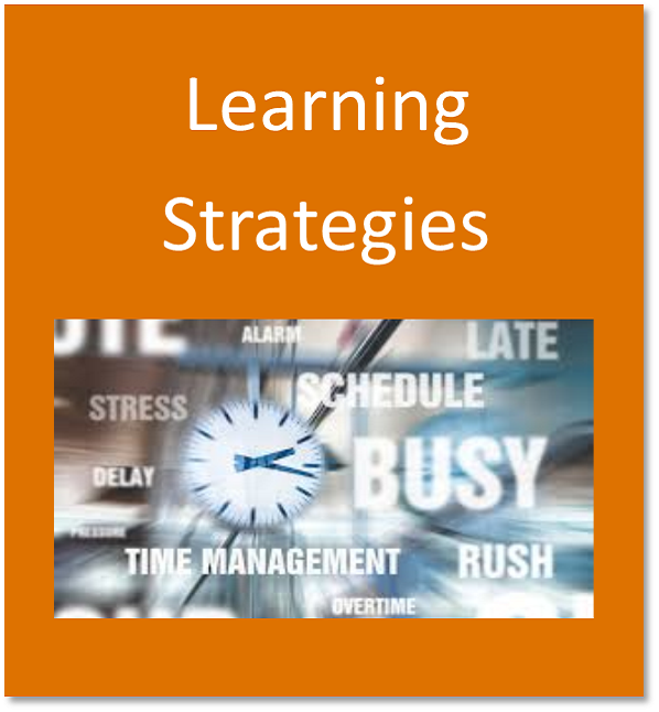 Learning strategies button containing a clock denoting time management
